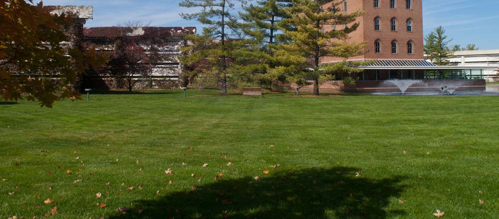 Green grass with trees in front of commercial building.