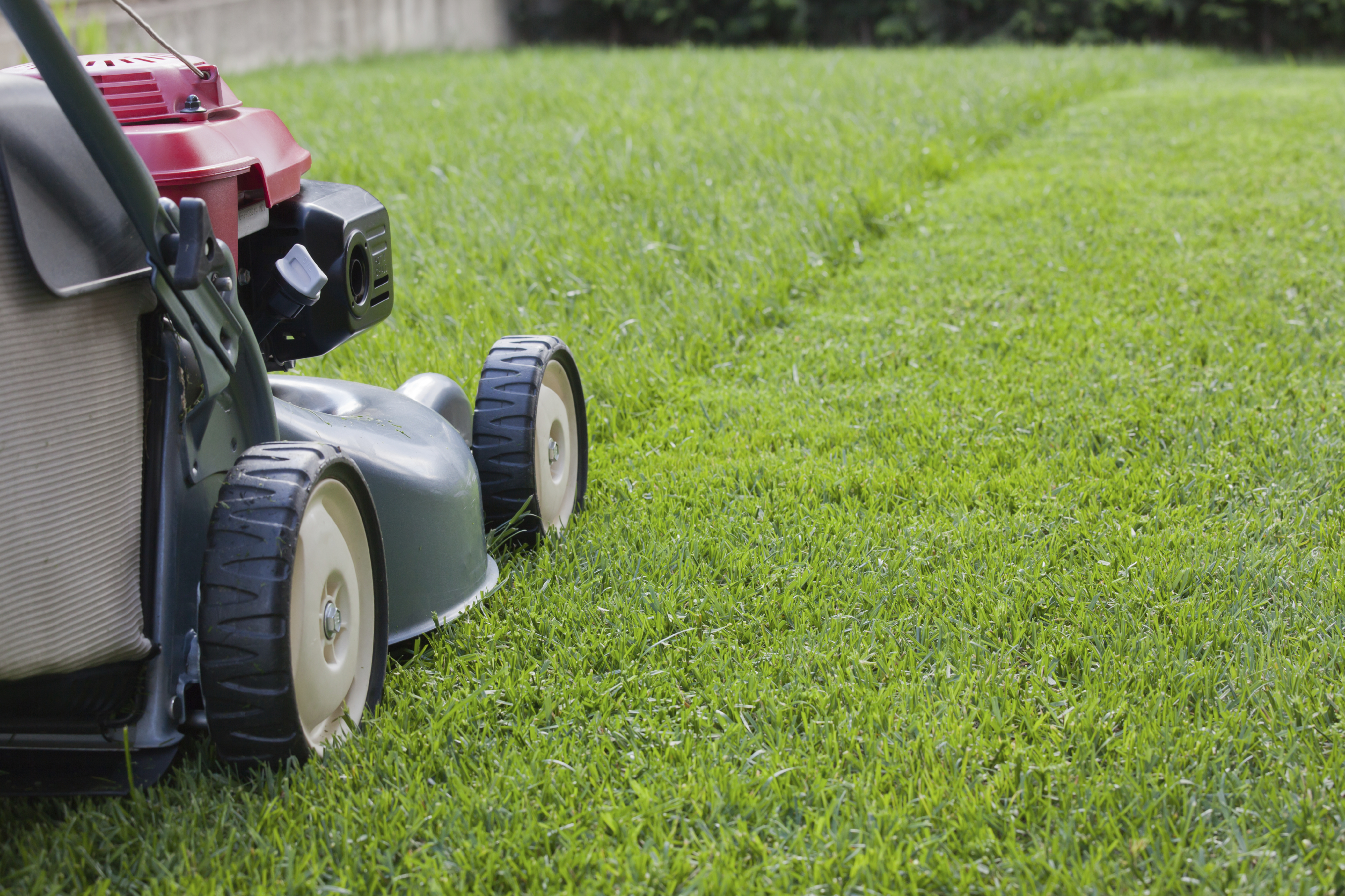 Mowing for a healthier lawn engledow group for Landscape maintenance