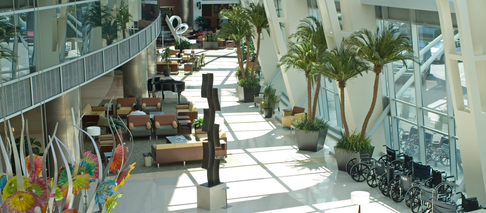 Interior atrium at Community Hospital with tall, green plants.