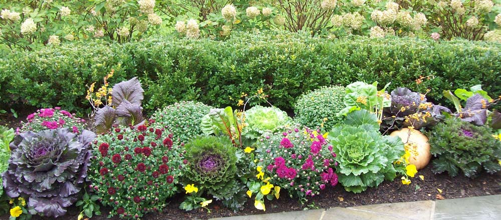 Engledow Flower Tree And Shrub Care Indianapolis