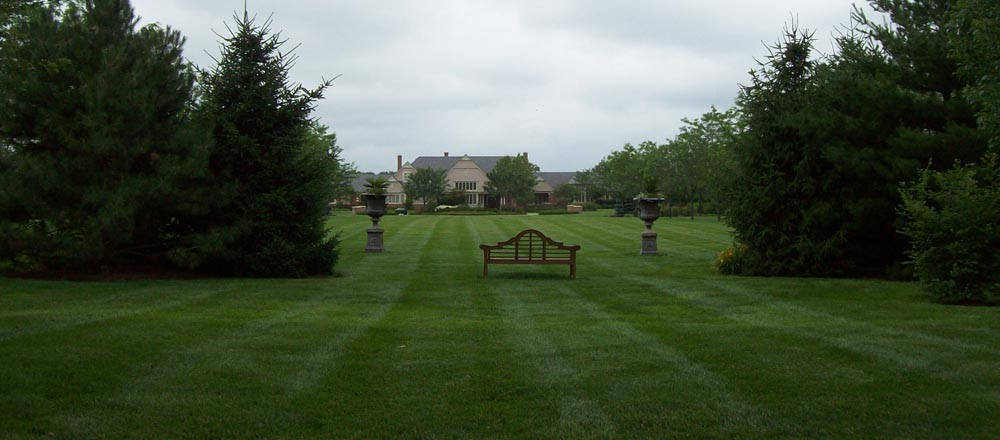 Big, beautiful green grass yard.