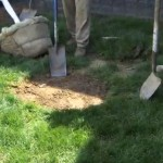 Engledow on Indy Style: Digging the Hole for Your Tree