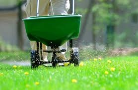 Fertilizer 101 The Why What How And When To Fertilize