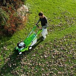 mowing over leaves