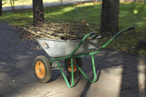 Wheelbarrow loaded with pile of sticks and debris