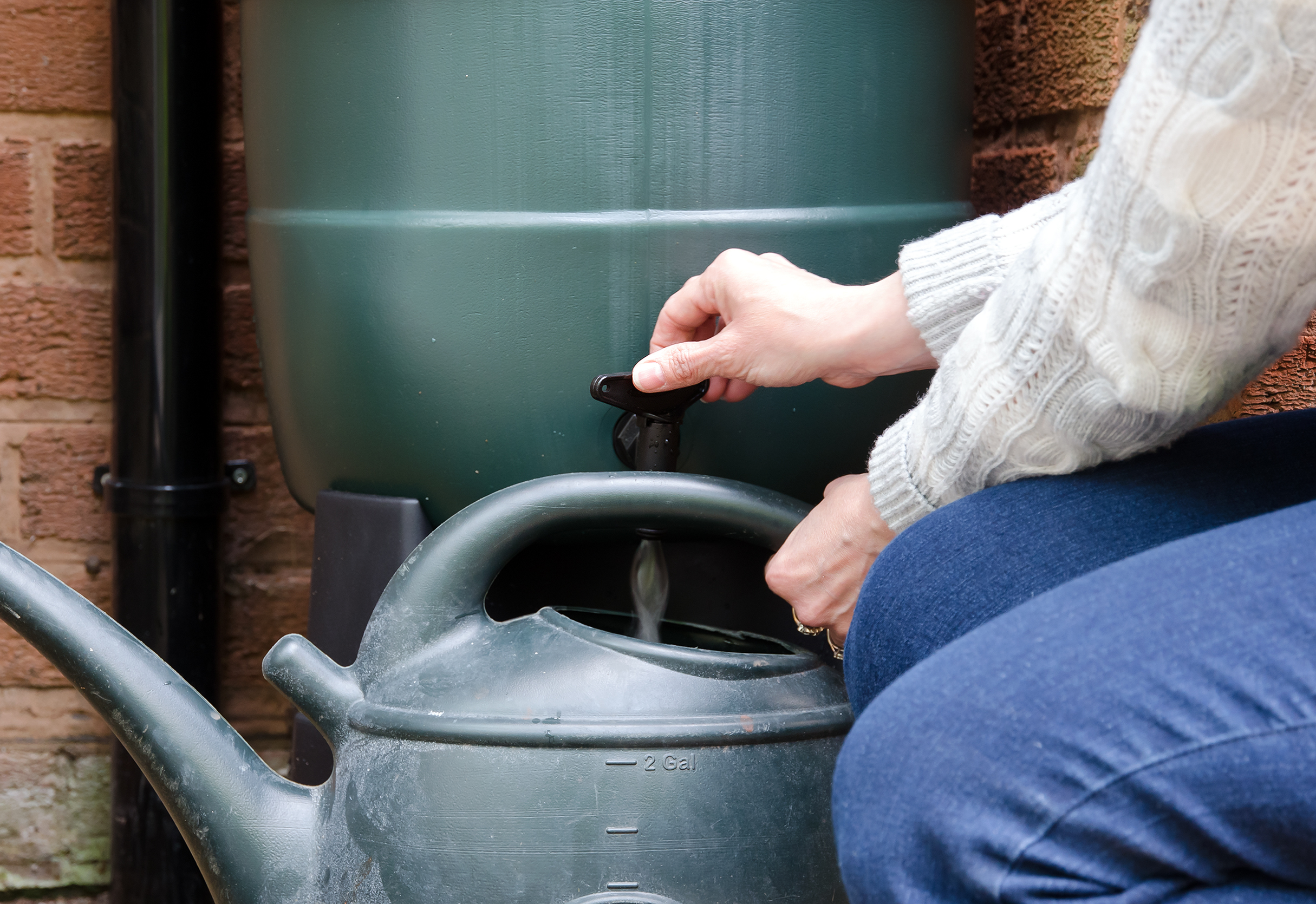 Woman filling a watering can from rain barrel