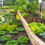 Creating a Landscaping Budget for Next Year? Here Are a Few Things to Think About.